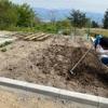 i-smartの家庭菜園 4月後半記録