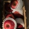 りんごとハチミツ