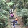 淡蘭金字碑古道:ハイキングのつもりがまあまあな山登りだった件