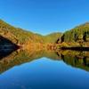 国道沿いの絶景紅葉スポット