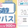 伊豆箱根鉄道  「いずっぱこ周遊1dayパス」