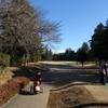 正月は、ゴルフに温泉にとんかつ、うどん。