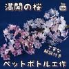満開の桜をペットボトルで作ろう How to make transparent cherry blossom