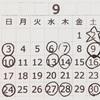 9月 BUNDE study  スケジュール