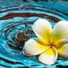 水面に伝わる波紋のように  自分を中心にして  自然に発生していくもの。