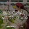 336食目「暖冬で野菜が安くなっている」沖縄タイムス社ウェブサイトより