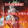 【2019年最新版】アニメ『Dr.STONE』が見れる動画配信サービスまとめ