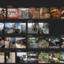 写真カタログとWebサービス