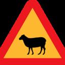 sheephumanのブログ
