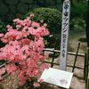 国宝松本城を散歩4(長野県松本市)