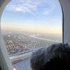 【ANA】エコノミーで行く中部国際空港からバルセロナ✈︎