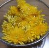 今夜は菊の花と鮭の粕汁を食べます
