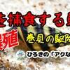 貝を食べる貝!!キラースネールお迎え♪