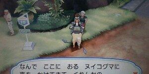 【ポケモンUSUM】10番道路のヌイコグマの居場所と報酬まとめ/イベント攻略編【ポケモンウルトラサンムーン攻略】