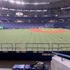 観客5000人制限、いまプロ野球の球場で何が起こっているか(+その中で観戦した感想)