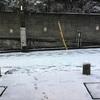 本日は休館日です&大雪。