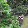 苔散策  庭園1