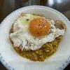 南インド料理の名店で個性的なカレーを楽しむ|糖質制限な食べ歩き(59)コチン ニヴァース@西新宿五丁目(東京都新宿区)