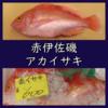 性転換する魚【アカイサキ】食べ方は刺身・卵の塩焼き・干物としよう!