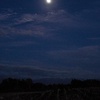 月影 冴え冴え