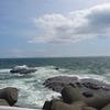 江ノ島の赤潮のその日の午後の状況について