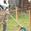 電動草刈り機で草刈り作業