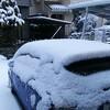 またまた積雪
