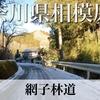 【動画】神奈川県相模原市 網子林道