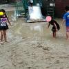 大雨の後の大泉緑地公園 その3