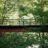 乳頭温泉郷に泊まって観光した場所と宿の記録
