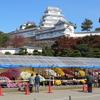 姫路城の菊花展!美しさに圧倒されました