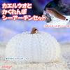 (海水魚)スポットテールブレニー+隠れんぼシーアーチンセットB(1セット) 北海道・九州航空便要保温