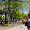 2017年4月19日(水)東京都美術館 ブリューゲル「バベルの塔」展