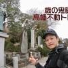 【動画公開】歳の鬼脚!!高幡不動トレラン