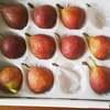 果物の選び方