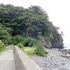 城ヶ崎海岸 自然研究路:八幡野漁港~門脇灯台(伊豆高原)