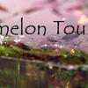 ウォーターメロン・トルマリン / vol.2:Watermelon Tourmaline / vol.2