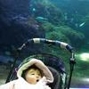 No.186⌒★【藤沢市】赤ちゃんを連れて新江ノ島水族館に行こう!乳児と水族館-2