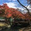 日本遺産(^_^;)