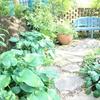 写真映えする庭を見に行きました。豊田市・ガーデンミュージアム花遊庭!