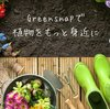 自分だけの植物アルバムを作ろう!『GreenSnap』でお花が好きになりそうなオッサンのアプリ紹介