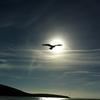 オリンピックの光と影。光の世界は、誰も知らない、でも素敵。――『オリンピックを学ぶ その3』(全3回+α)