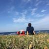 大学生がたそがれたくて伊豆諸島で3日間野宿してきた話