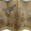 ミモザ・ガーデンの日記 日本人の草花愛
