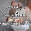 【ブログ4ヶ月】PV数とか運営報告!100記事達成して検索流入がふえた!?