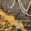 僕が自転車通学を諦めた3つの理由