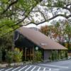 【スターバックス 樹齢300年のクスノキにインスパイアされた店舗】東京都西東京市「珈琲館くすの樹」の跡地に出店