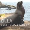 【ラ・ホヤビーチ|レビュー】アザラシと出会えるアメリカ・サンディエゴの高級リゾート