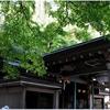 清荒神・清澄寺(宝塚市)の風景 part75