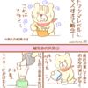 12/177ヶ月スタート(離乳食の失敗・・・)&食器洗い機!